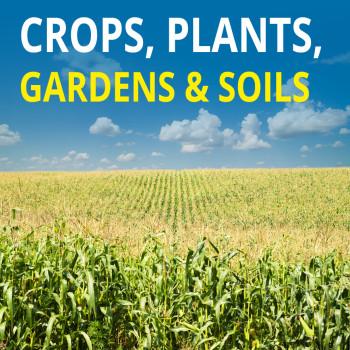 Crops, Plants, Gardens & Soils