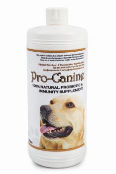 Pro Canine
