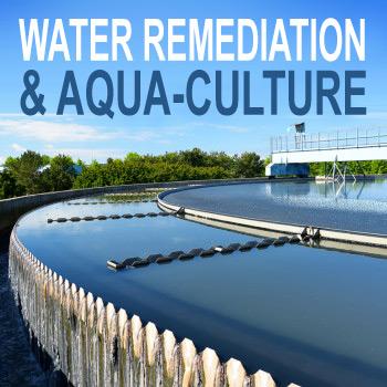 Waste & Water Remediation