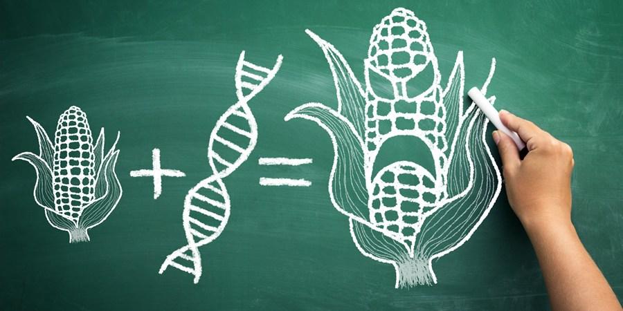 NON-GMO PRODUCTS