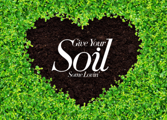 Spring Ready Your Soils - Garden Care with Pro-Soil